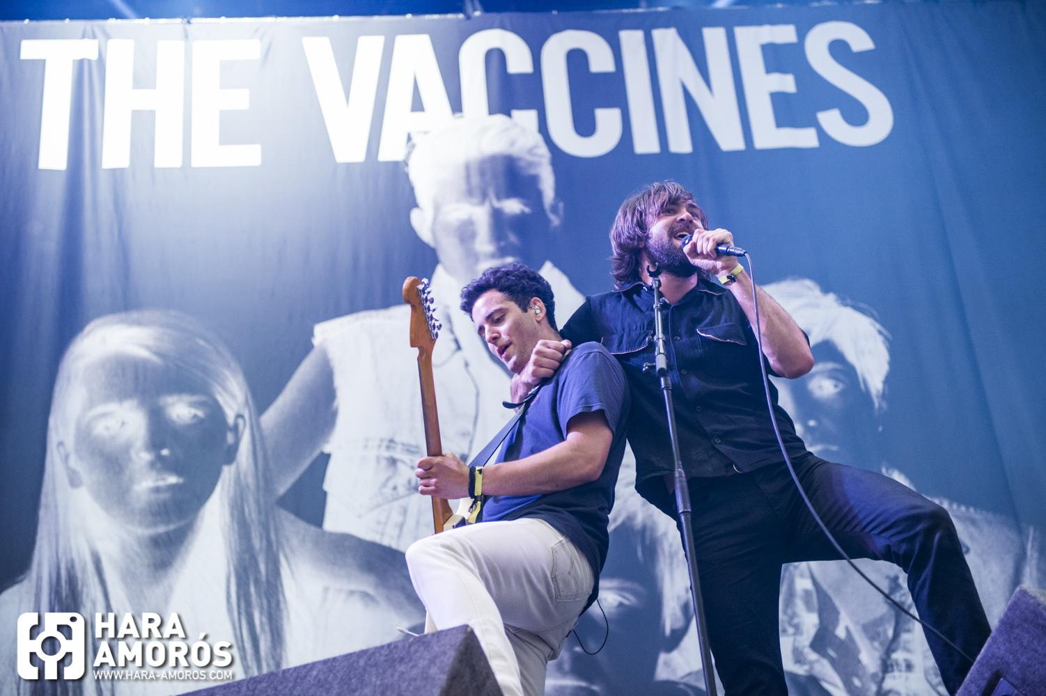 BBK-19 The Vaccines